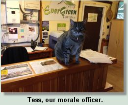 Tess, our morale officer.